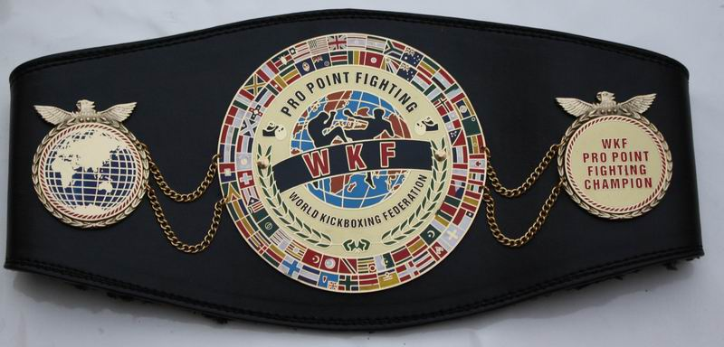 WKF Pro Point Fighting World belt